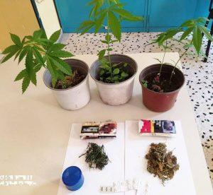 Συνελήφθη ημεδαπή στην Ικαρία, για κατοχή και καλλιέργεια ναρκωτικών ουσιών. Εξετάζεται η εμπλοκή ενός ακόμη ατόμου στη συγκεκριμένη υπόθεση