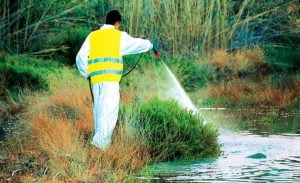 Πρόγραμμα 4ου ψεκασμού καταπολέμησης κουνουπιών έτους 2019 για τους Δήμους Ανατολικής και Δυτικής Σάμου