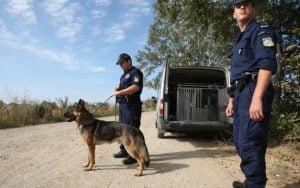 Συγχαρητήρια ανακοίνωση της Π.Ο.ΣΥ.ΦΥ (Πανελλήνια Ομοσπονδία Συνοριακών Φυλάκων) για τους επιτυχόντες νέους συνοριακούς φύλακες που εισάγονται στην Ελληνική Αστυνομία