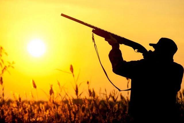 Κυνήγι: Χωρίς σημαντικές αλλαγές η νέα απόφαση για την κυνηγετική περίοδο 2020 - 2021